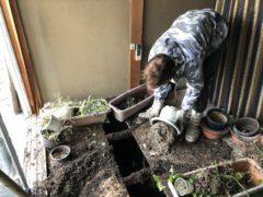 京都市 解体工事 「 山科区西野山百々町」 DAY2